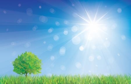 summery: summer landscape  Illustration