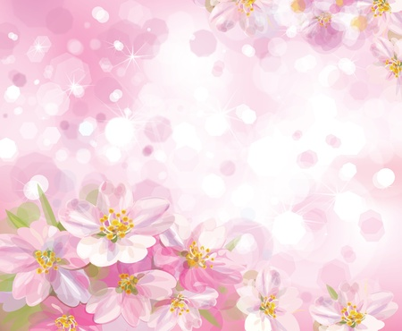 pink flowers: Vector of spring blossoming tree with pink background Illustration