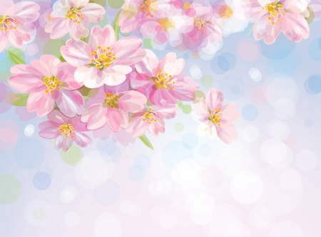 spring background: Vector of spring blossoming flowers of apple tree