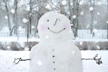 bolas de nieve: Diversi�n mu�eco de nieve en el parque