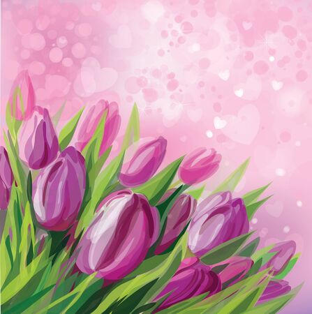 pink tulips: Pink tulips