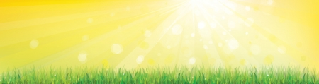 panoramic nature: Sunny sky background with grass  Illustration