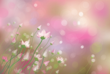 meadow spring: Flowers on spring bokeh background