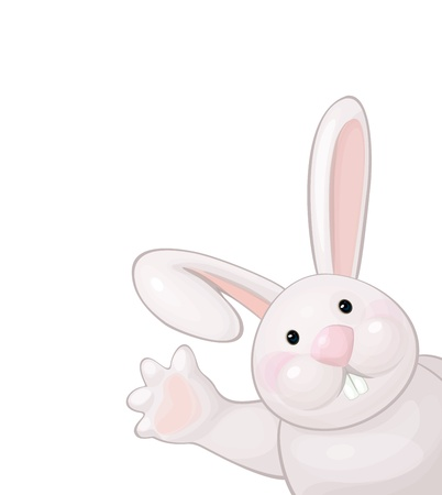 Vector of funny rabbit isolated. Vector