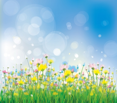 Vector of colorful flowers on spring background  Illustration