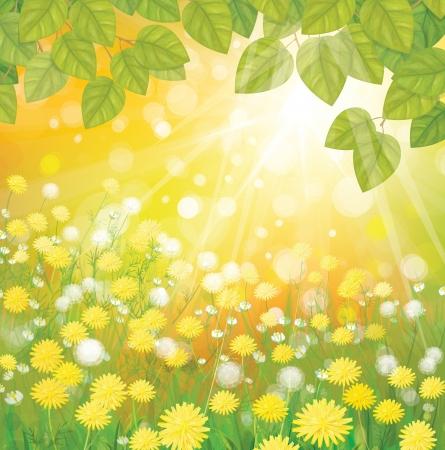 blinking: fondo soleado con dientes de le�n y hojas verdes Vectores