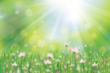 Vector pink flowers on sunny background