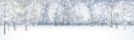 森林における降雪冬の風景  イラスト・ベクター素材