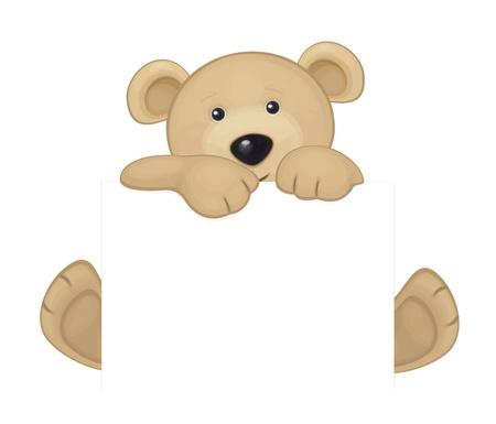 Cute brown bear hiding by blank