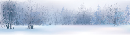 Vector of winter landscape, snowy forest  Vector