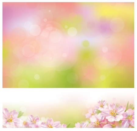 Vector of spring backgrounds for design.