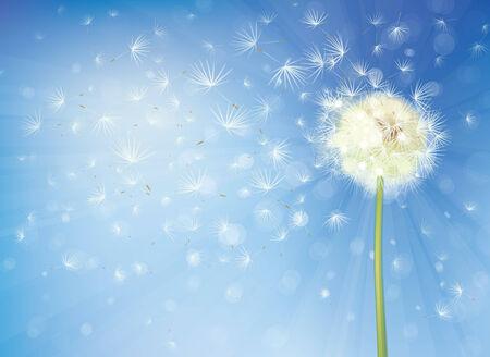 ベクトルが空を背景にタンポポ。
