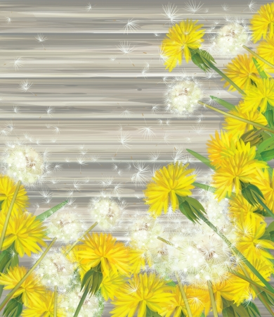 Vector floral frame with dandelions on wooden background   Vector