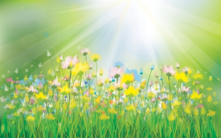 grassy field: Vector sunshine background with colorful flowers