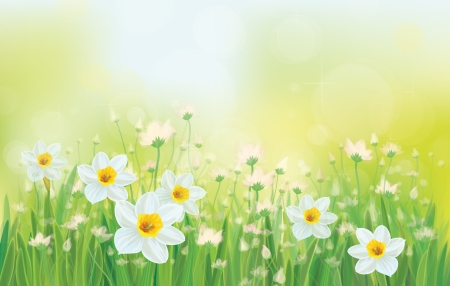 Vector daffodil flowers on sky background. Иллюстрация