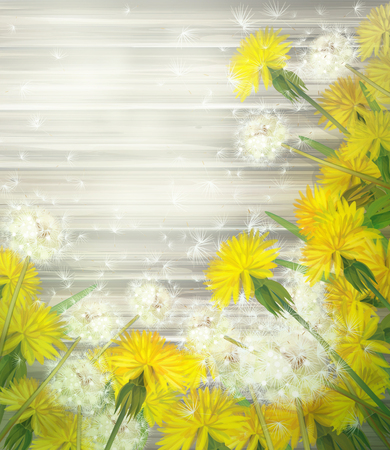 Dandelions on wooden background   photo