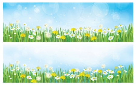Vector nature  spring backgrounds.  Illustration
