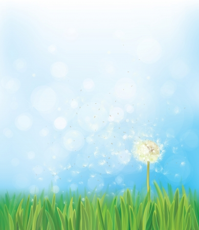 Vector dandelion on spring  background. Vector