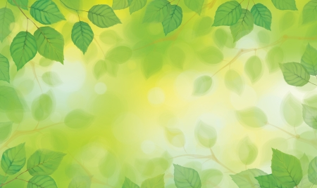 Vector green leaves on sunshine background  Ilustração