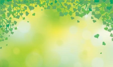 sunshine background: Vector green leaves on sunshine background  Illustration