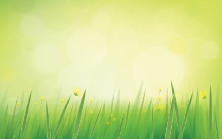 Vector natuur achtergrond