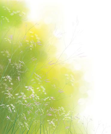 sfondo natura: Vector natura sfondo