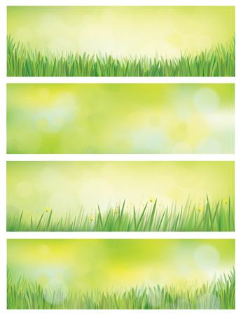 springtime: Vector nature backgrounds.
