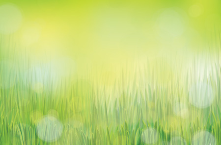 Vector nature backgrounds  Illustration