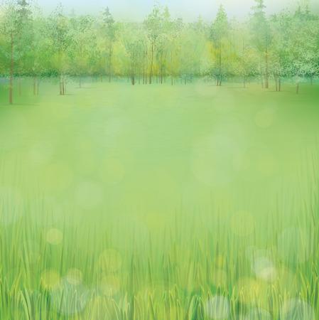 Vector spring landscape  Vector