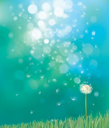 Vector van de lente achtergrond met witte paardebloem