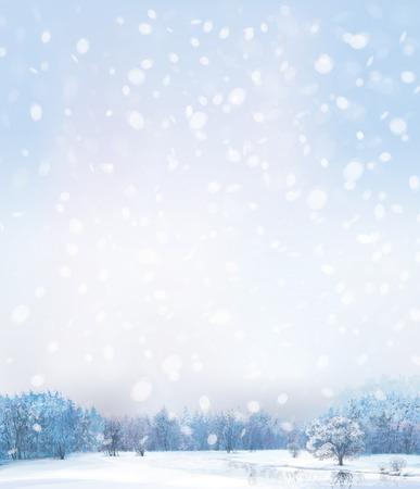paisaje: Vector de escena de invierno con bosque de fondo.