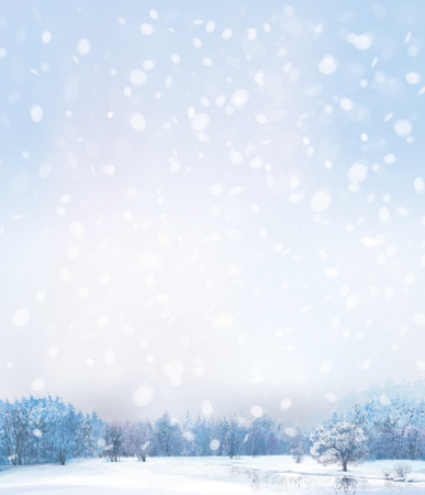 Landschap: Vector van winters tafereel met bos achtergrond.
