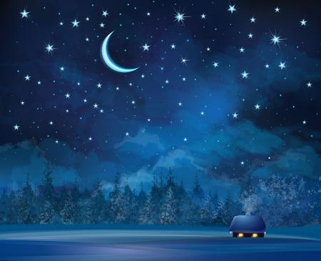 Vector nacht scène met huis op sterrenhemel achtergrond en bos.