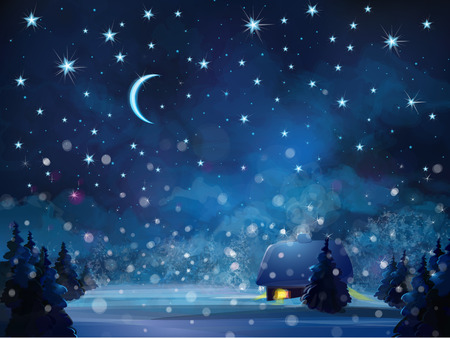 bilding: Vector winter night  landscape with house in forest. Illustration