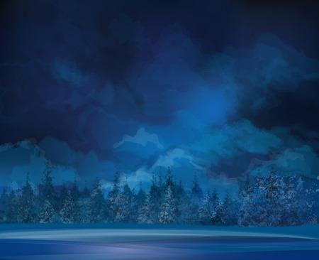 Scena di notte d'inverno, il cielo e la foresta di sfondo Archivio Fotografico - 29041446