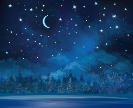 night winter scene, sky and forest background. Vector