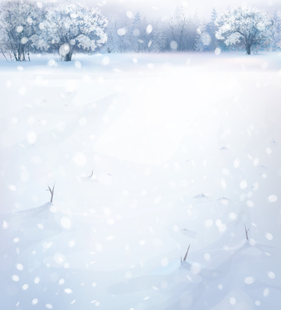 snow field: winter landscape. Illustration