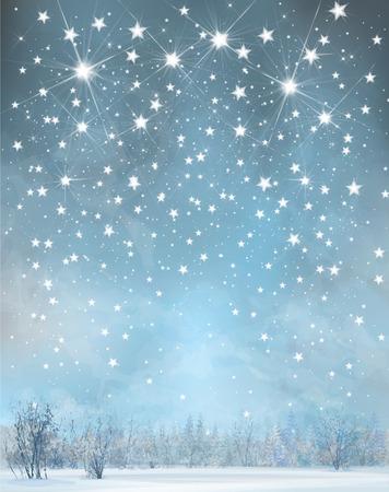 snow field: Vector winter background.