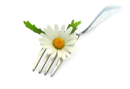 chamomile flower: Fork with chamomile flower  Stock Photo