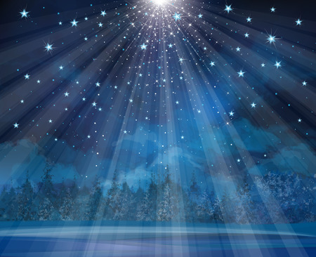 woods: Vector winter background with lights and stars. Illustration