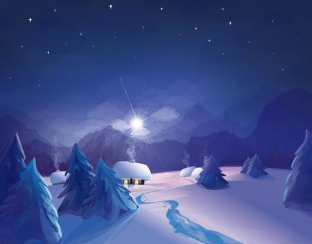 night  winter scene. Vector
