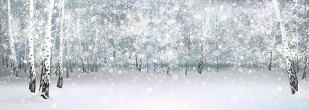 winter snowy landscape, birch forest.