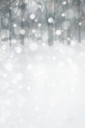 winter wonderland: Winter landscape. Stock Photo