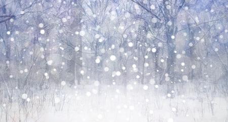Winter landscape. Stok Fotoğraf