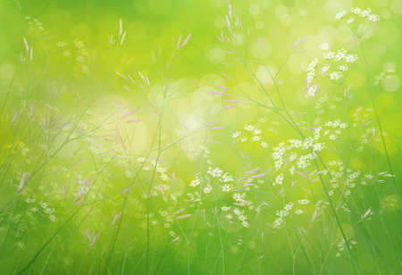 green background: Spring floral  background.