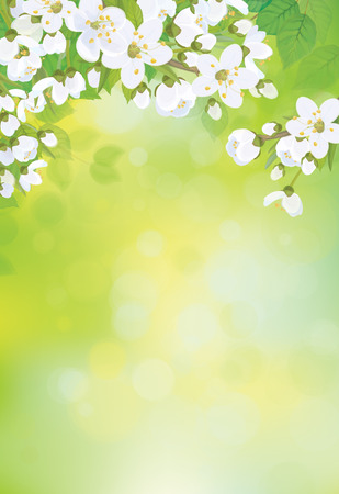 Vector spring blossoming tree on bokeh background.