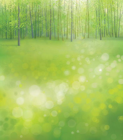 scenics: Vector spring  forest background.