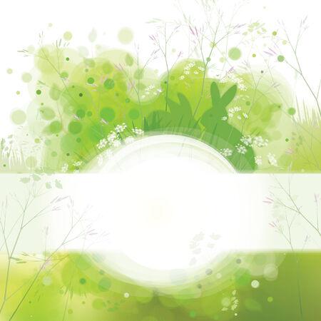 sfondo natura: conigli verde primavera sfondo natura.
