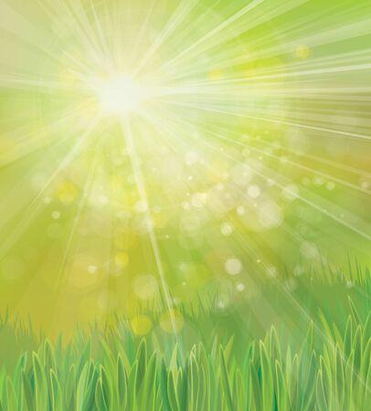 sfondo natura: Vector primavera sfondo natura.