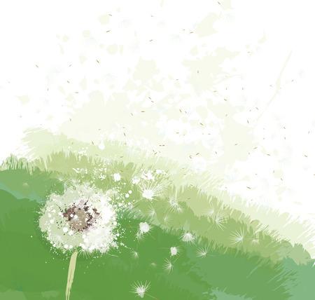 ink painting: Vector white dandelion on spring background. Illustration